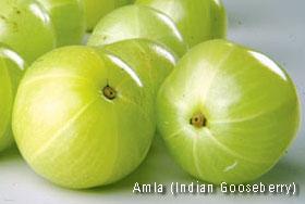 Amla - Indian Gooseberry