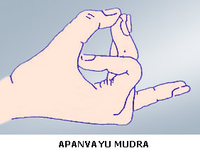 Image result for Apana Vayu Mudra